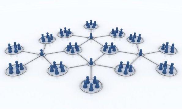 Our organization network DMC
